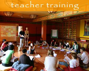 Yoga teacher training Courses TTC nepal
